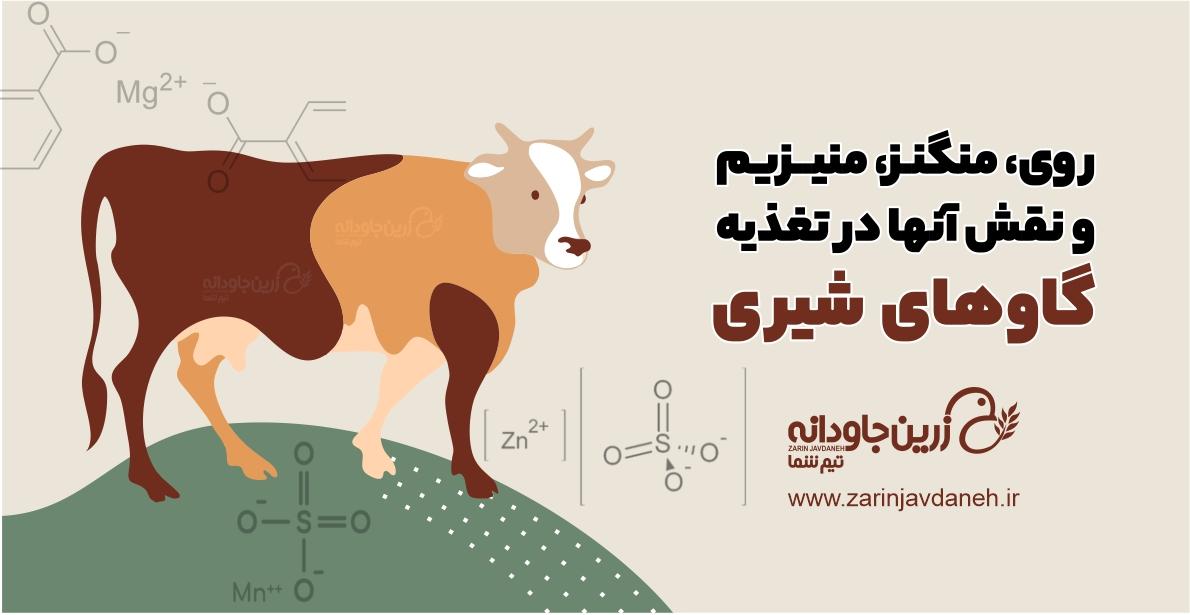 روی، منگنز، منیزیم و نقش آنها در تغذیه گاوهای شیری