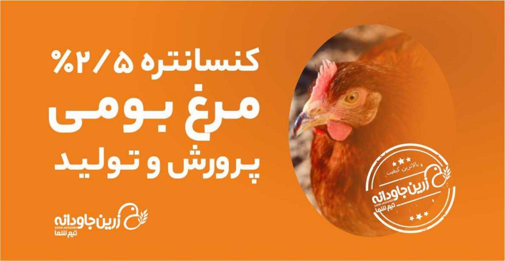 کنسانتره مرغ بومی
