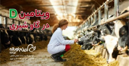 ویتامین D در گاو شیری